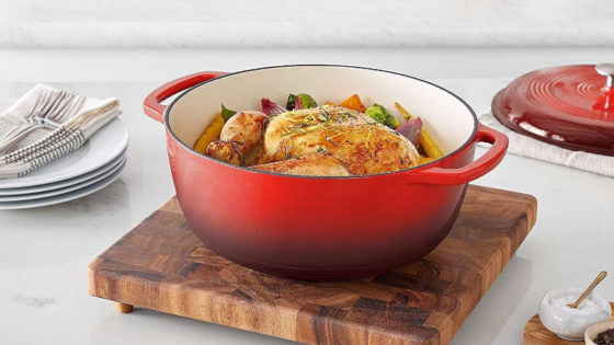 enameled dutch oven reviews